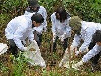 なんとの森づくり事業の協力参加について