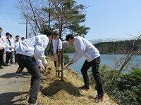 桜ヶ池エコビレッジ「桜満開プロジェクト」に参加